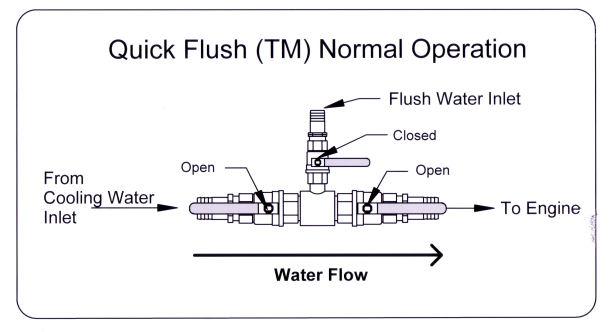 NE-Flush01